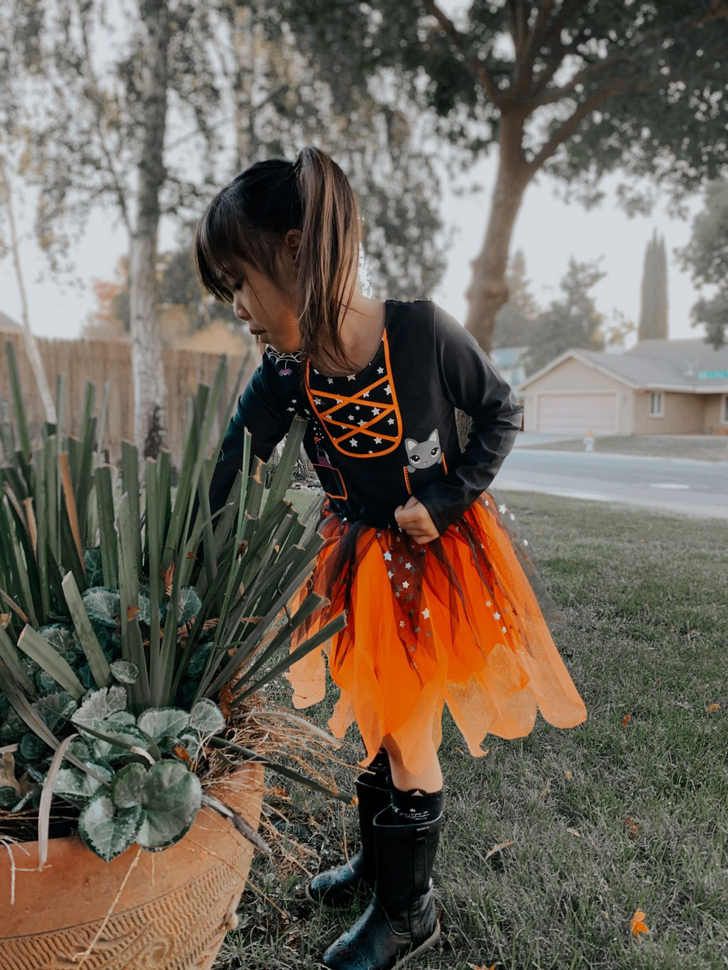 hallloween tutu dress