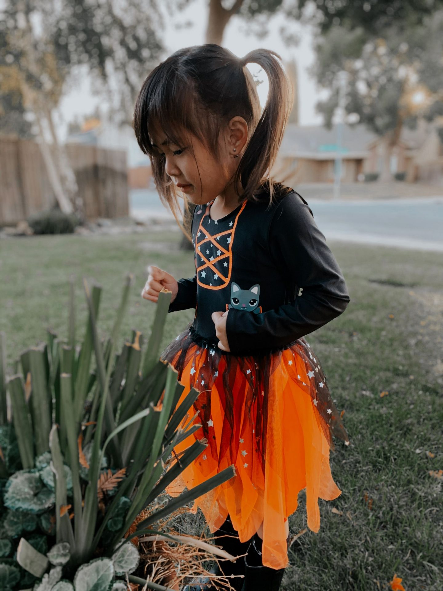 halloween orange tutu costume